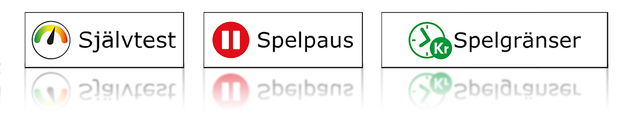 spelpaus casino